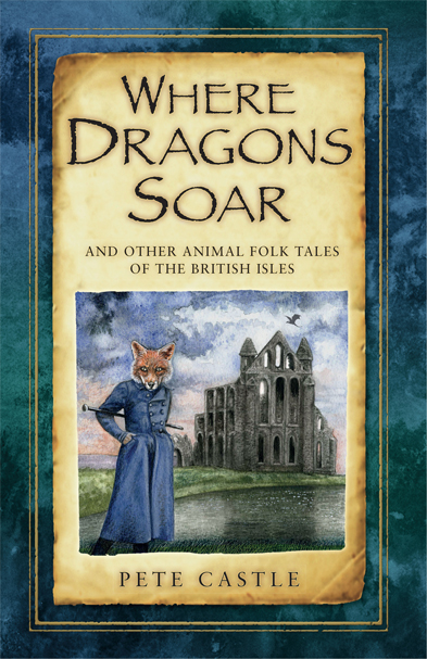 Dragons Soar Book